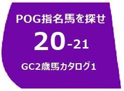 2020グリーンチャンネルカタログ1ゼッケン
