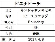 20200229阪神4ピエナビーチ