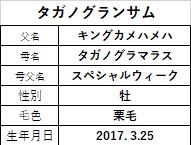 20200314阪神4タガノグランサム
