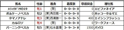 20200620阪神5ボルケーノペスカ兄姉
