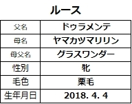 20200809新潟6ルース