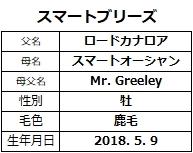 20201206阪神5スマートブリーズ