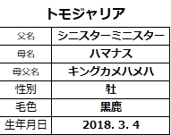 20201212中山6トモジャリア