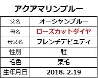 20210130東京2アクアマリンブルー