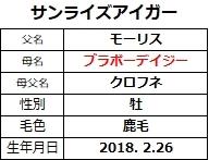20210213阪神4サンライズアイガー