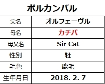 20210418新潟5ボルカンバル
