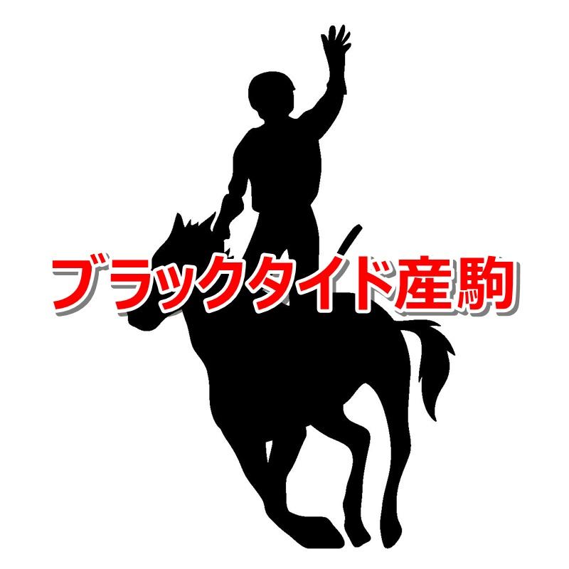 ブラックタイド産駒カタログキャッチ
