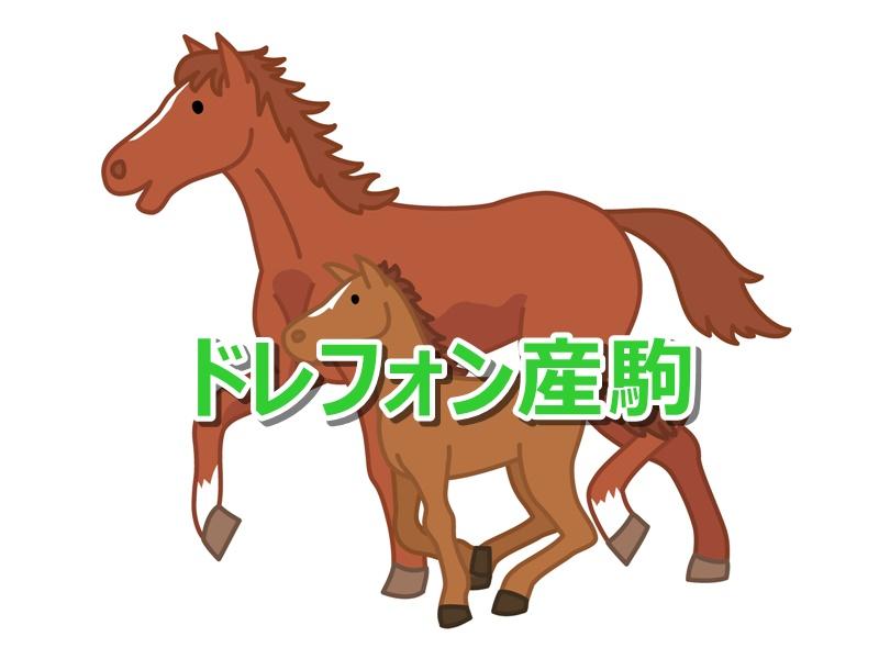 ドレフォン産駒カタログキャッチ