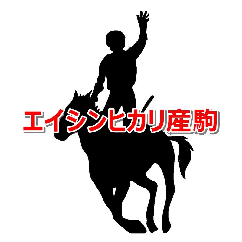 エイシンヒカリ産駒カタログキャッチ