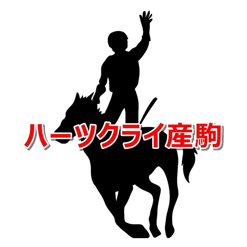 ハーツクライ産駒カタログキャッチ