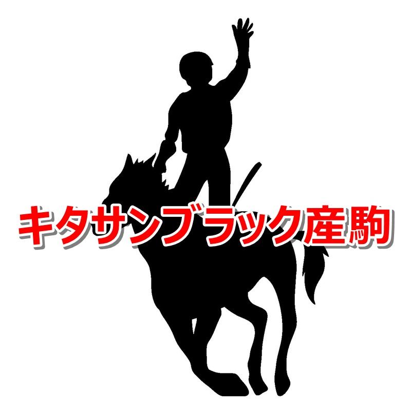 キタサンブラック産駒カタログキャッチ