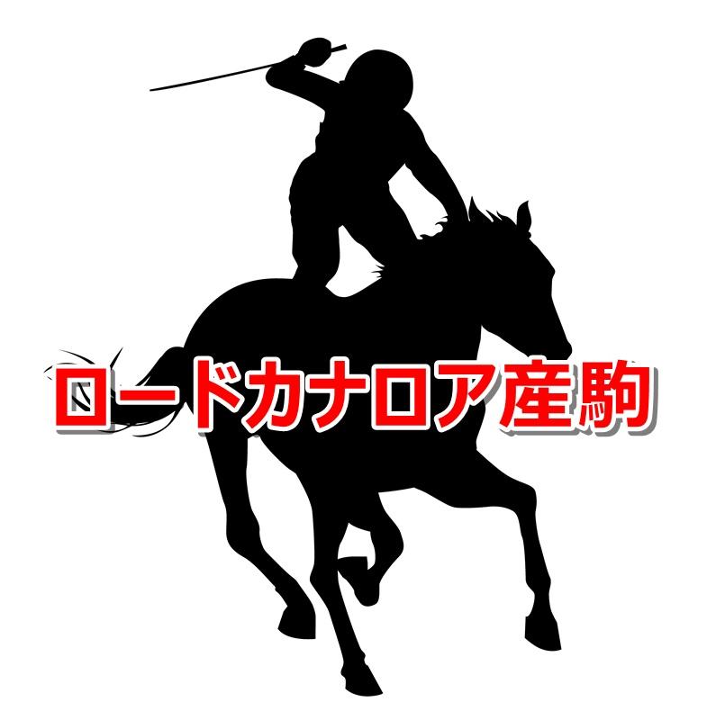ロードカナロア産駒カタログキャッチ