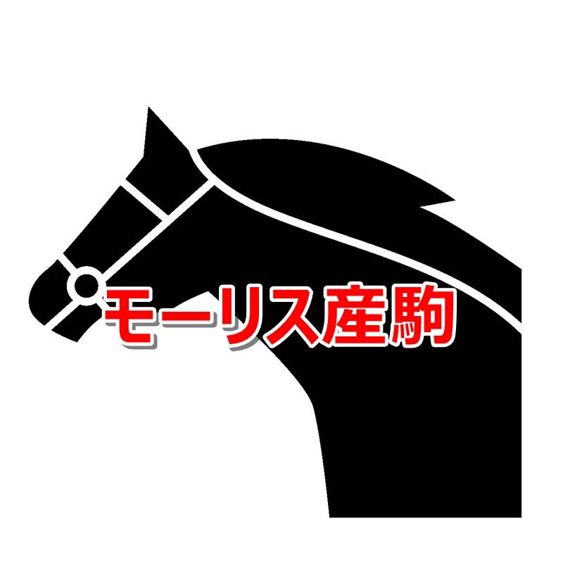 モーリス産駒カタログキャッチ