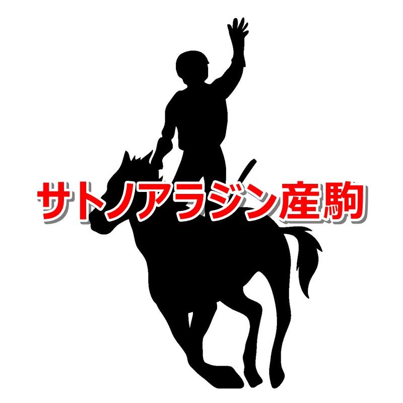 サトノアラジン産駒カタログキャッチ